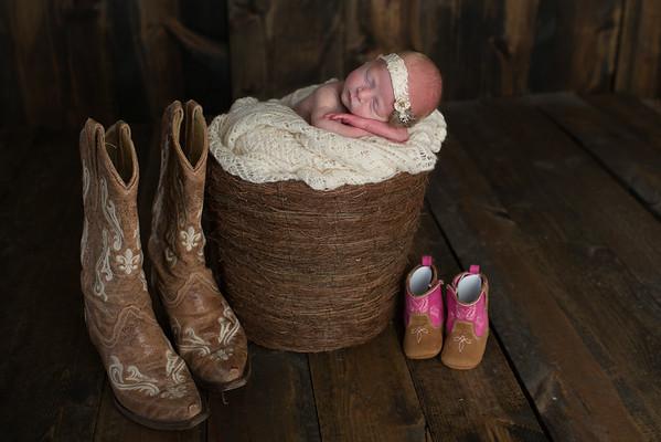 Dallis Strome Newborn